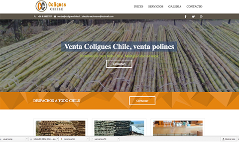 Diseño web coligues chile